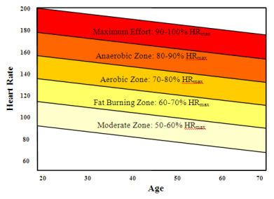 Heart Rate Zones